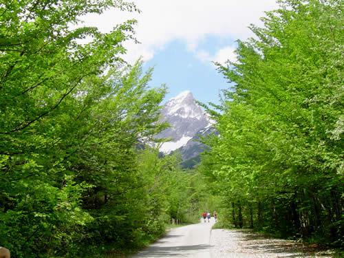 Wunderschöne Blicke auf die Bergwelt